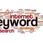 Understanding Search Types for SEO